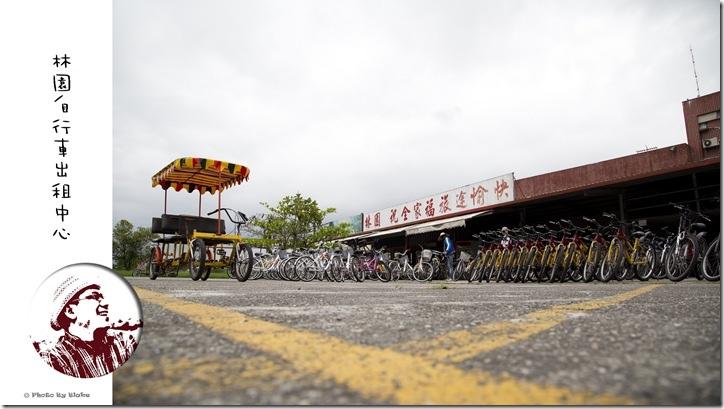 林園自行車出租中心-台東旅遊-騎遊關山小旅行