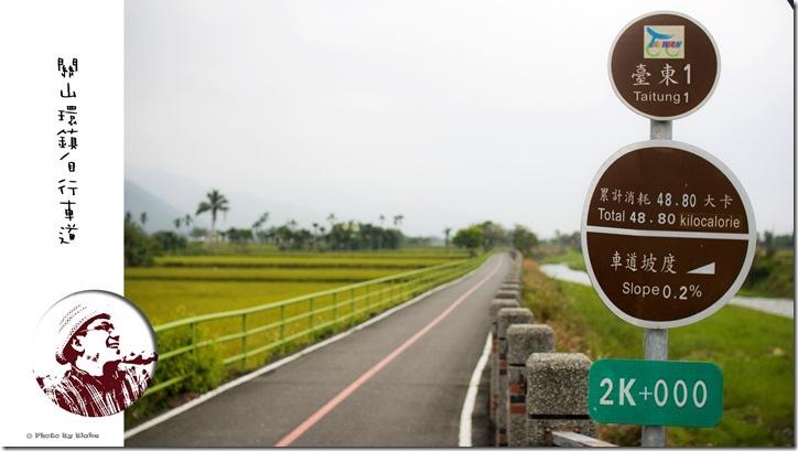 關山環鎮自行車道-台東旅遊-騎遊關山小旅行