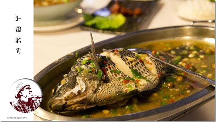 醬瓜蒸鮮魚-宜蘭美食-壯圍穀倉