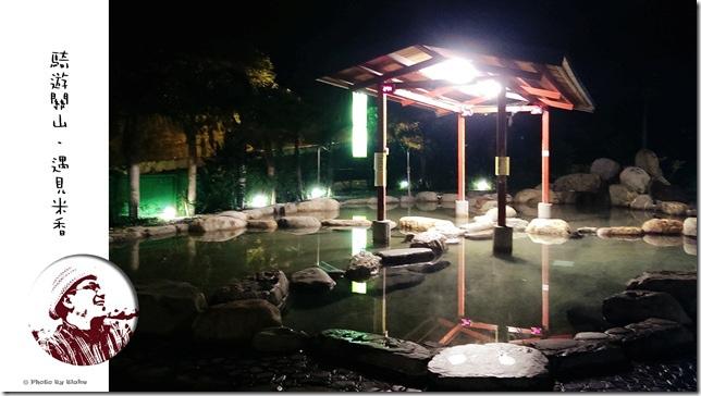 鹿野鄉-山月溫泉館