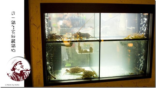 這一鍋-鮮跳活蝦